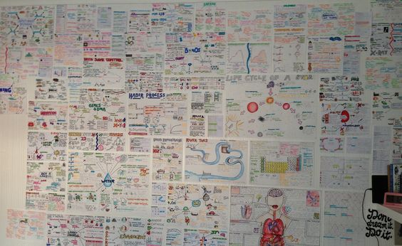A wall of revision notes
